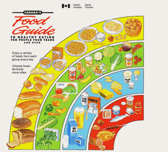 Printable Canada S Food Guide