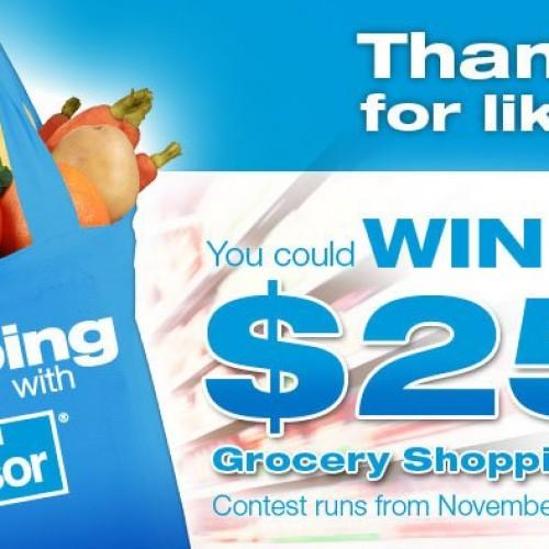 Windsor Salt Grocery Shopping Spree Contest