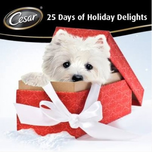 Cesar 25 Days of Holiday Delights