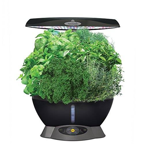 MiracleGro AeroGarden Classic 6 with Gourmet Herb Seed Pod Kit