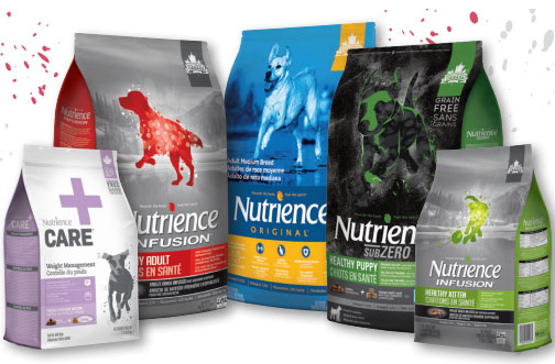 nutrience dog food cat food coupon