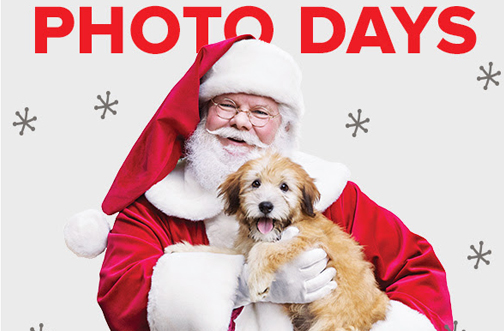 Free Photos With Santa At Petsmart Deals From Savealoonie