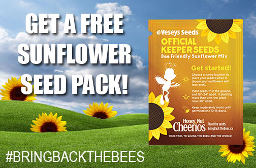 free sunflower seed cheerios bring back the bees