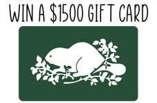 Roots Contest | Win A $1500 Gift Card