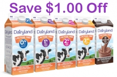 Dairyland Lactose Free Milk Coupon