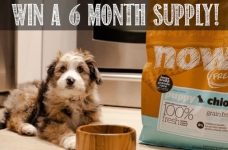 WIN 6 Months of Free Petcurean Pet Food