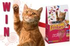 Win a Year's Supply of Friskies Cat Food