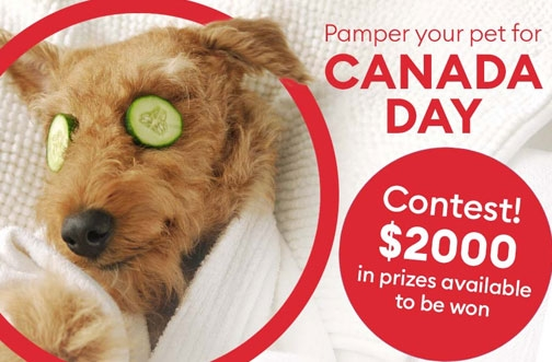 PetSmart Contest Canada | Pamper Your Pet For Canada Day