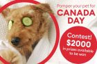 PetSmart Contest Canada   Pamper Your Pet For Canada Day