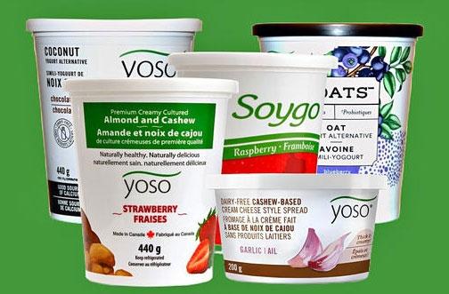 BOGO Free Yoats Dairy Free Yogurt Coupon