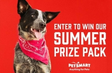 PetSmart Contest Canada | Summer Prize Pack Giveaway