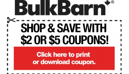 photo regarding H and M Printable Coupons identified as Print Discount codes inside of Canada On the internet Printable Canadian Discount codes