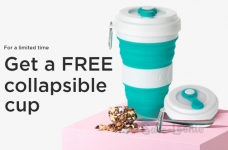 DAVIDsTEA Coupons & Deals August 2020