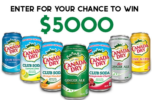 *NEW* Canada Dry Contest | Moon Rabbit Contest + The Real Chill A Day Giveaway
