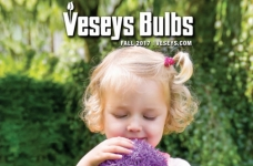 Veseys Free Catalogue Subscription