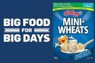 Mini-Wheats Big Food for Big Days Contest
