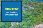 Into the Wild in Guadeloupe Contest