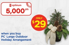 PC Optimum Flash Sale Outdoor Holiday Arrangements