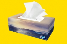 Royale Tissue for 3¢ Coupon