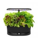AeroGarden Bounty Basic w/Heirloom Salad Greens Seed Kit