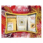 Burt's Bees Face Essentials Holiday Gift Set ($34 Value), 4 Skin Care Products