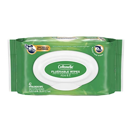 Cottonelle GentlePlus Flushable Wet Wipes with Aloe & Vitamin E, 42 Wipes