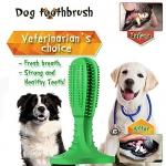 Natural Rubber Dog Brushing Stick