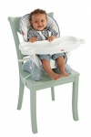 Fisher-Price SpaceSaver High Chair – Geo Meadow