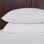 puredown Down Fiber Pillow Set of 2